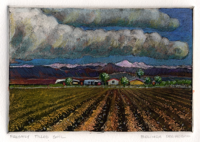 a monotype landscape of freshly tilled rows with clouds above and a far in the background