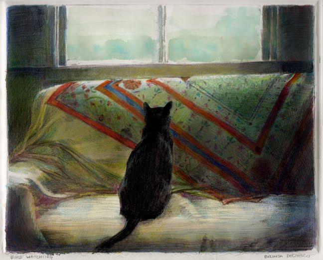 a black cat on a patterned backdrop couch with his back to the viewer, staring out a window