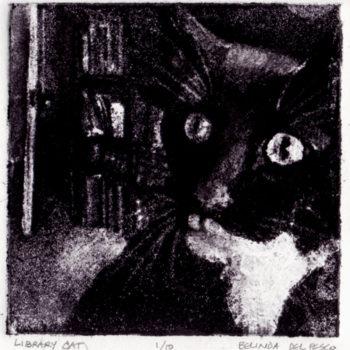librarycat4x41.1072