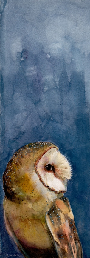 barn-owl-watercolor