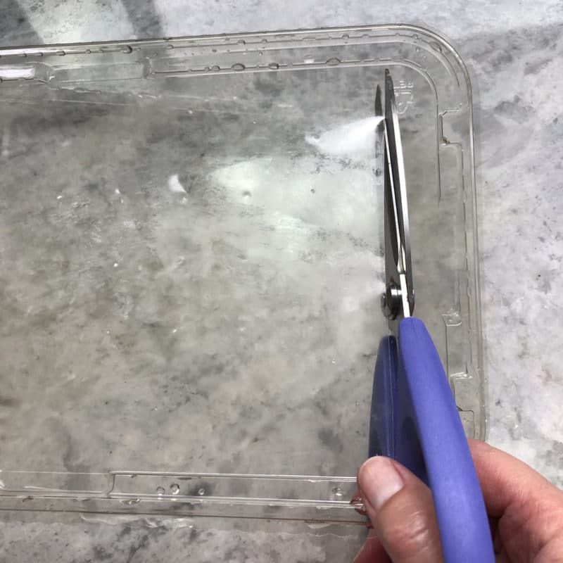 Use scissors to trim the flat parts of plastic food containers out of the lid and bottom to use them as printmaking plates