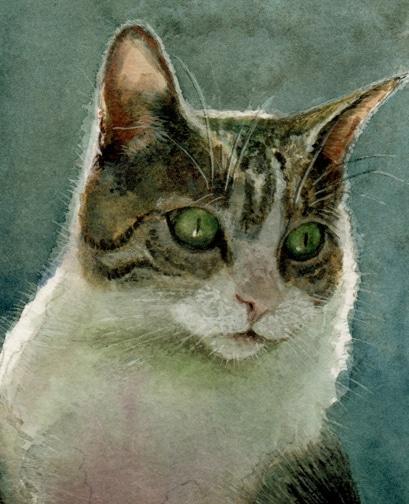 watercolor of a cat