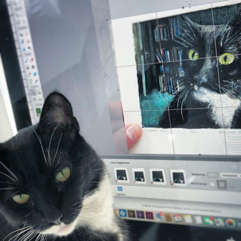 a computer screen with an image of the cat portrait art, and the cat who posed for the art in front of the monitor, looking at the viewer.