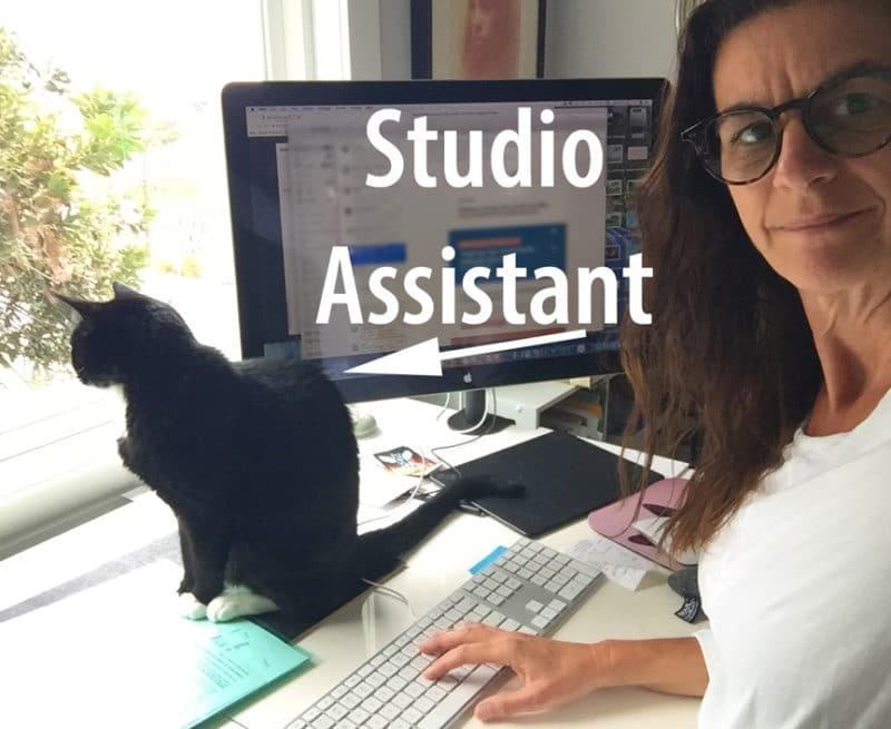 an artist in her studio with a tuxedo cat sitting on her work table