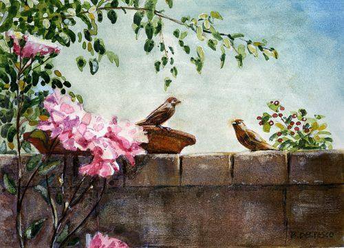 a block wall with birds eating from a flat bowl of seed and pink roses framing the scene painted in watercolor