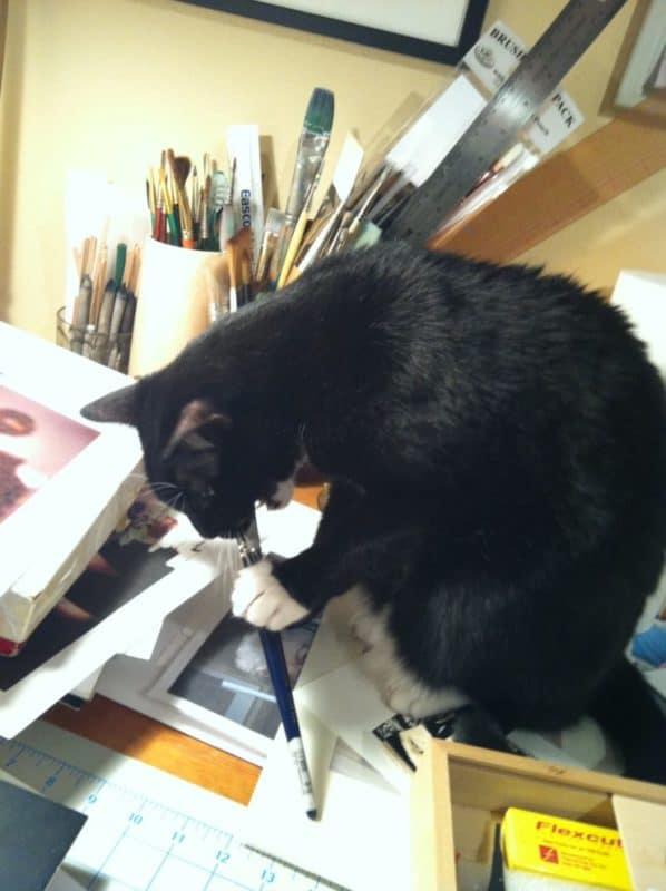 a tuxedo cat with a watercolor brush in his paws, chewing on the bristles