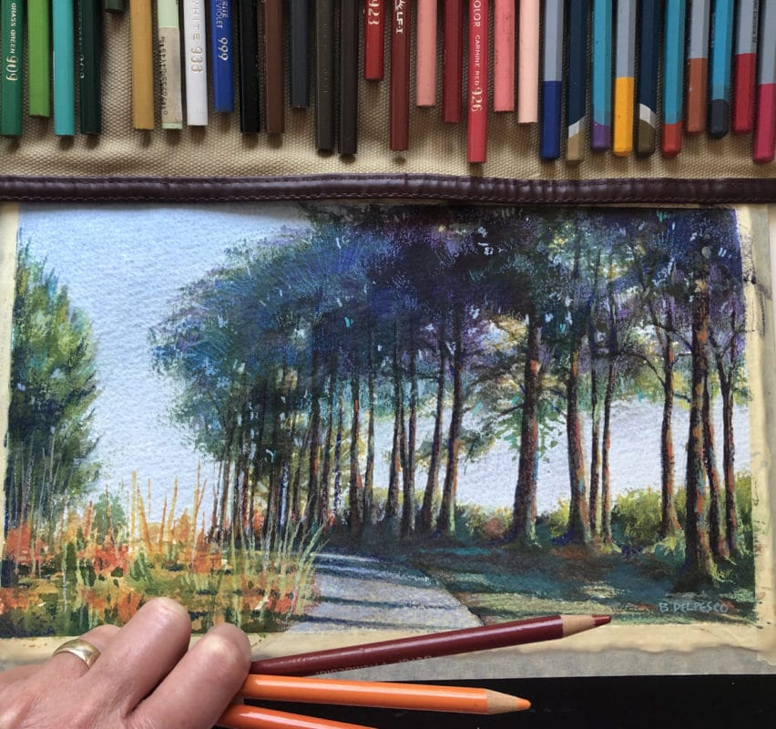 adding colored pencils to a watercolor illustration of a stand of trees