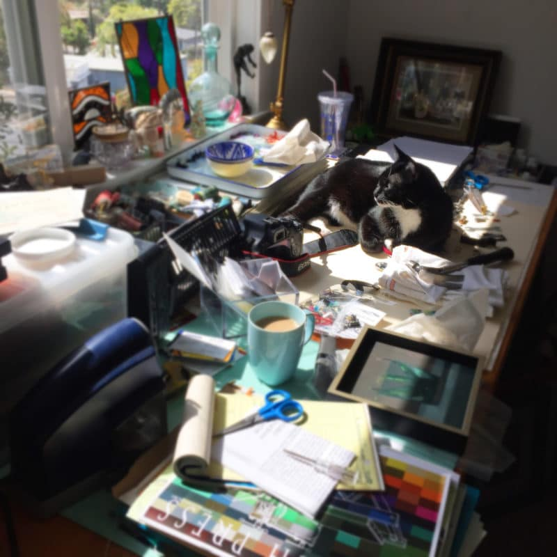 A cat laying in the sun on a messy desk